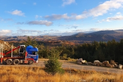 Thompsons Scania with Timber trailer with scenic view