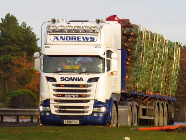 Andrews Scania R580 Super loaded with Christmas Trees